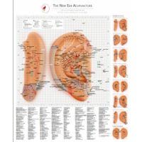 THE NEW EAR ACUPUNCTURE - ENGLISCH von Dr. Bahr - 2018