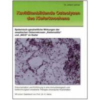 Kavitätenbildende Osteolysen des Kieferk nochens