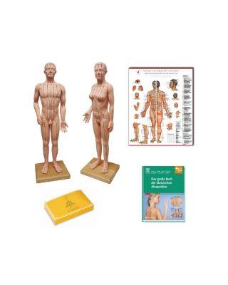 Einsteiger Angebot Körperakupunktur