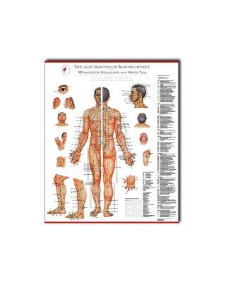 Tafel aller chin. Akupunkturpunkte nach  Dr. Bahr & Dr. Suwanda