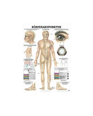 Körperakupunktur Tafel