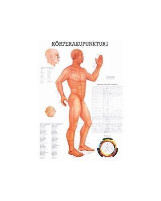 Körperakupunktur I Tafel