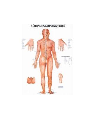 Körperakupunktur II Tafel