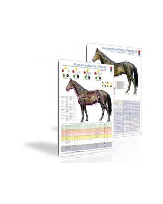 Akupunkturtafel Pferde 1+2