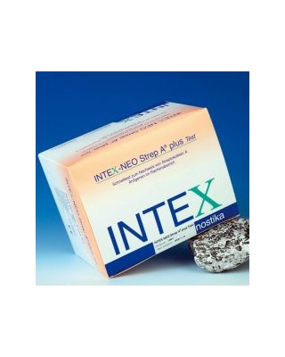 Intex Neo Strep A Plus-Test